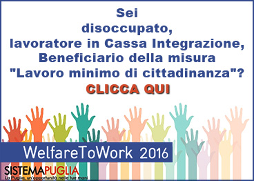 Welfare to Work 2016 - 2017